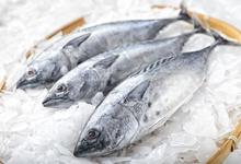 Стоит съесть: стейк из калкана в «Южанах», севиче из лосося в Chicha, рыбный суп в Fish Me