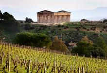 Вино как чудо. Почему Крым и Сицилия — самые похожие винодельческие регионы Европы