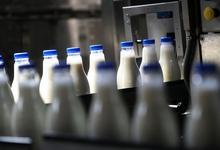 Конец неопределенности: молоко будет киснуть точно в срок