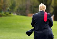Голый король. Почему падают доходы Дональда Трампа