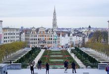 Маленькая страна: как получить бельгийское гражданство