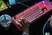 «Делай как я»: нужно ли программисту высшее образование?
