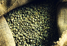 Не те зерна. Что такое зеленый кофе и почему он дорого стоит