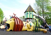 Теория хаоса: почему безопасная среда не так уж полезна для детей