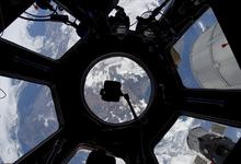 Космические странники: кого Юсаку Маэдзава возьмет с собой на Луну