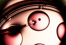 ЭКО-система: что нужно знать об оплодотворении в пробирке