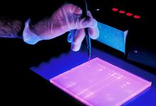 По живому: впервые отредактирована ДНК внутри организма человека