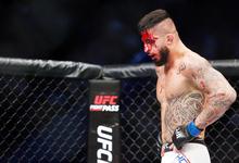 Драку заказывали: как UFC будет зарабатывать в России