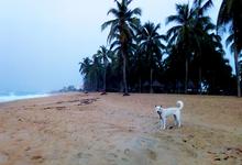 Одна вокруг света: как Новый год в Того может принести абсолютное счастье
