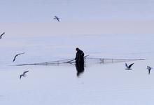 Сложный промысел. Как повернуть российского рыбака к потребителю