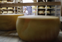 Узник пармезана: смогут ли российские сыровары сделать сыр как в Италии