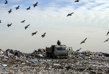 Большая свалка. Можно ли научить россиян перерабатывать мусор