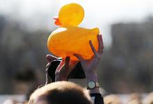 Простить «награбленное». Почему борьба с коррупцией в России неэффективна