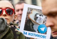 Новый иск к Роскомнадзору: чего требуют пользователи Telegram?