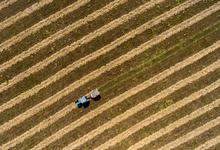 Экономисты указали на завышение статистики по сельскому хозяйству в России