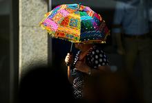 Горячие годы приходят: климатологи обещают знойную пятилетку