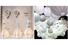 Лампы из бумаги и папье-маше, €900, светильники из рисовой бумаги