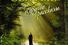 Архимандрит Тихон (Георгий Шевкунов). «Несвятые святые и другие рассказы»