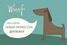 Социальная сеть с геолокацией для хозяев собак