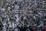 Гнев демонстрантов вызвало решение властей уничтожить зеленые насаждения в центре Стамбула