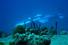 Подводная лодка DeepFlight Super Falcon