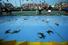 Гонки козлов и голубых крабов (Букко, Тринидад и Тобаго)