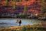 Национальный парк Денали (США)