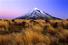 Таранаки или Эгмонт (Новая Зеландия)