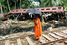 Землетрясение и цунами 2004 года в Индийском океане