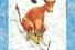 Юя и Томас Висландер «Мама Му и снегокат», иллюстрации Свена Нурдквиста