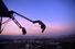 Три аттракциона на башне Stratosphere (Лас-Вегас, США)