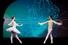 Театральная программа открылась отрывком из балета «Спящая красавица» в исполнении ведущей балерины Большого театра Анны Тихомировой и премьера Мариинского театра Евгения Иванченко