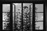 17.«24 кадра» (24 Frames)