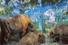 Олег Кулик. Зубры. 2000 — 2001 (из серии «Музей природы,или Новый рай»)