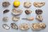 UMI Oysters на Центральном рынке