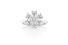 Кольцо  Forget-me-Not, Harry Winston, белое золото, бриллианты