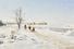 Иван Похитонов, «Зимний пейзаж, освещенный солнцем». £100 000- 150 000