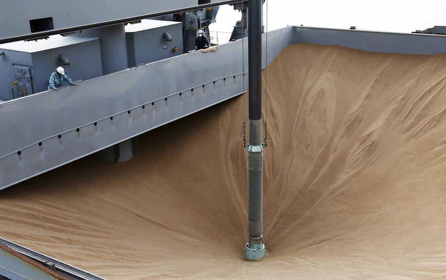 Руководство  РФрешило реализовать  1,5 млн тонн зерна набиржевых торгах
