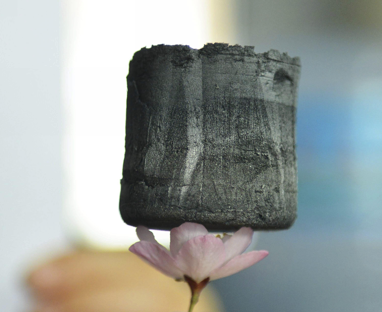 Конструкции из графена могут быть столь легки, что не примнут даже лепестки цветка
