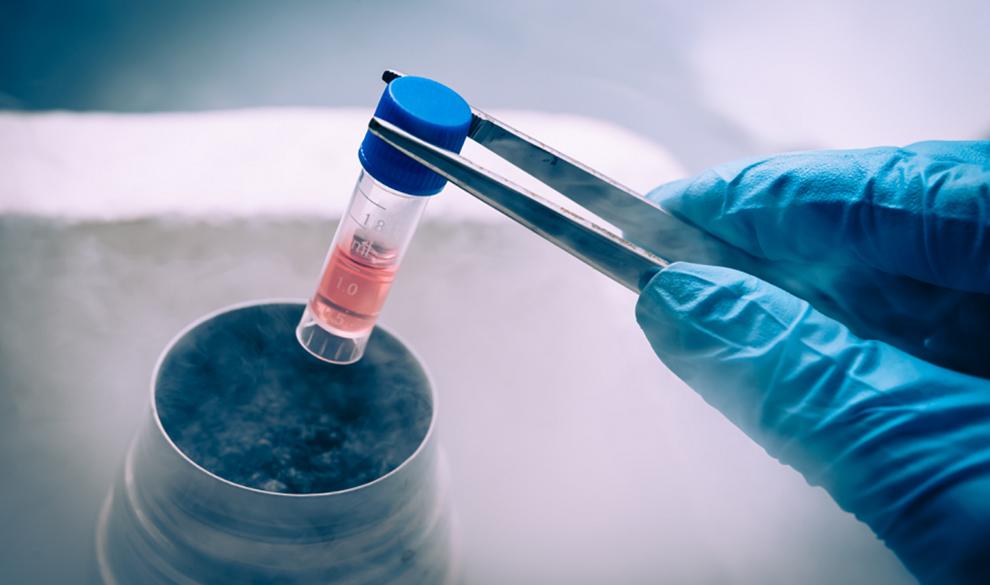 Как закон «О биомедицинских клеточных продуктах» отразится на российских инновациях