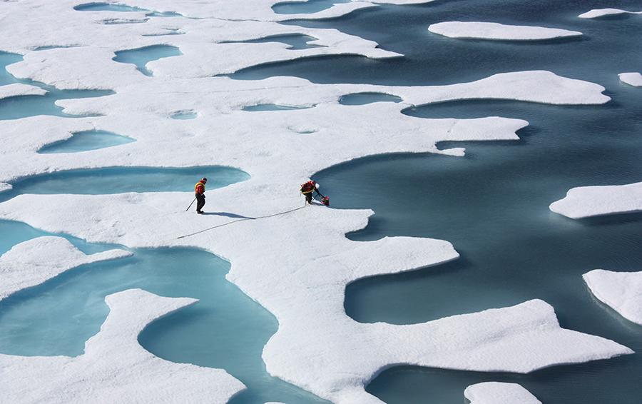 Война за Северный полюс: «Роснедра» захватили ресурсы Арктики