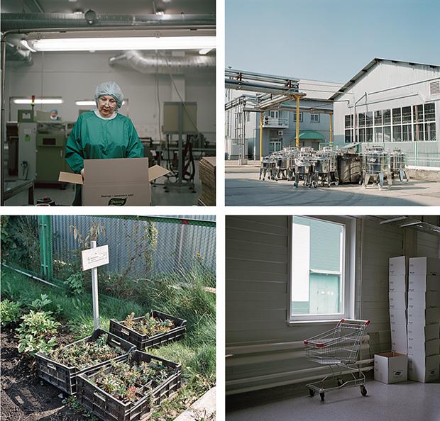 «Эвалар»: 10 000 кв. м производственных площадей, 1000 га земли под травы. На выходе -- более 200 наименований биодобавок
