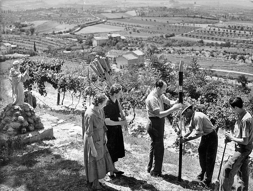 Еще в середине  XX века виноделы запускали антиградовые ракеты для защиты урожая