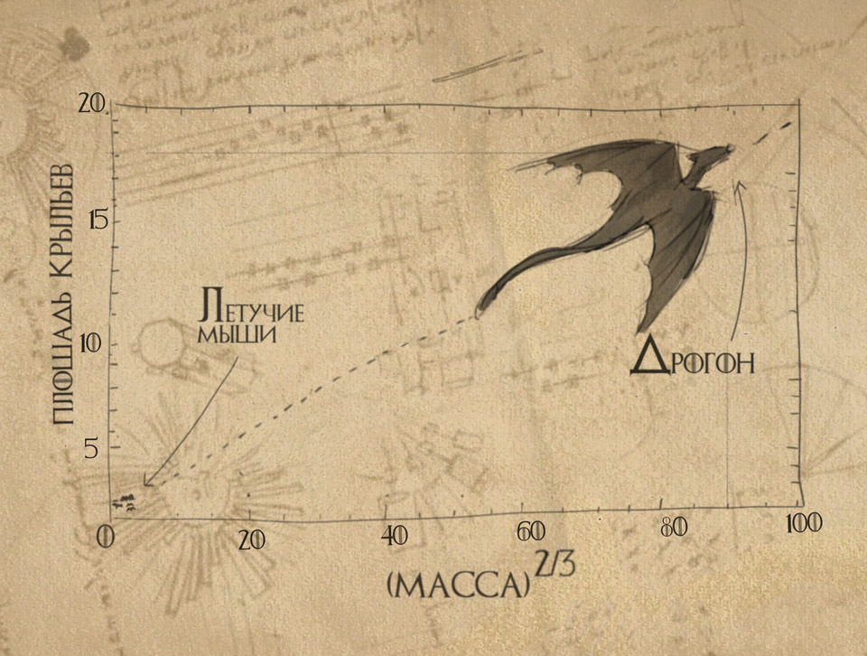Зависимость площади крыльев от массы дракона