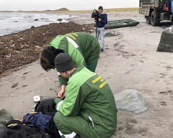 Следствие назвало приоритетную версию загрязнения воды на Камчатке