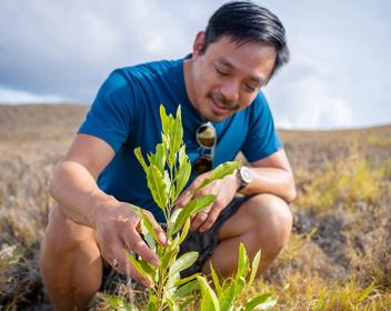 Стартап на выбросы: как бывшийCEO Redditпривлек $30 млн на восстановление лесов и борьбу с изменениями климата