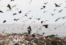 Оттенки серого. Как решить «мусорную» проблему