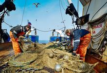 Море закрывается. Почему иностранцев выдавливают из рыбной отрасли