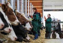 Производители предупредили о возможных перебоях в поставках молочной продукции в магазины