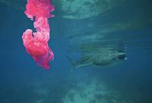 «Сам по себе пластик — не зло». Как построить успешный бизнес и спасти океан